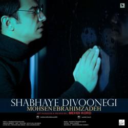 Mohsen Ebrahimzadeh - Shabhaye Divoonegi