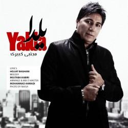 Mojtaba Kabiri – Yalda