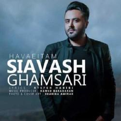 Siavash Ghamsari – Havaeitam