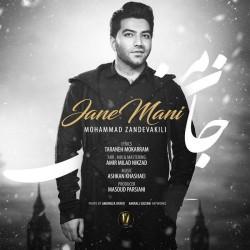Mohammad Zand Vakili – Jane Mani