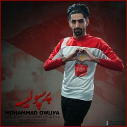 Mohammad Owliya – Perspolis