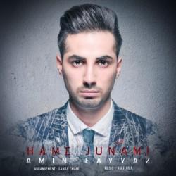 Amin Fayyaz – Hame Joonami