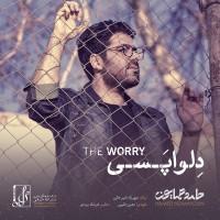 Hamed Homayoun - Delvapasi