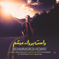 Mohammadreza Hedayati - Vasat Parvaneh Misham