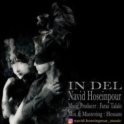Navid Hosseinpour – In Del