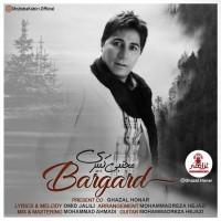 Mojtaba Kabiri - Bargard
