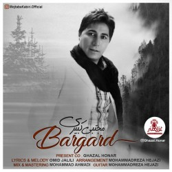 Mojtaba Kabiri – Bargard
