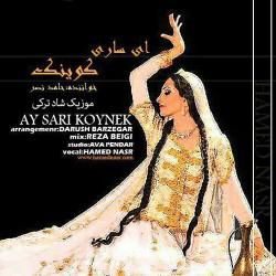 Hamed Nasr – Ay Sari Koynek