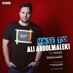 Ali Abdolmaleki - Vase To