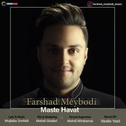 Farshad Meybodi - Maste Havat