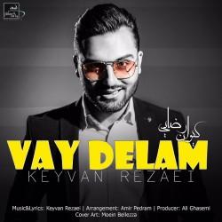 Keyvan Rezaei - Vay Delam