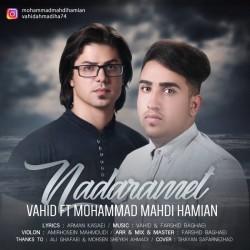 Vahid Ft Mohammad Mahdi Hamian - Nadaramet