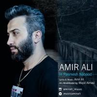 Amir Ali - In Rasmesh Nabood