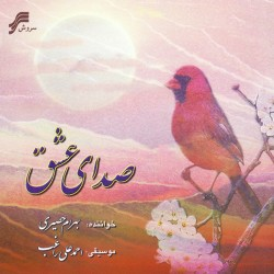 Bahram Hasiri - Sedaye Eshgh