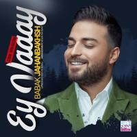 Babak Jahanbakhsh - Ey Vaaay