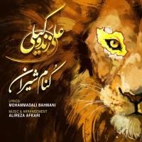 Ali Zand Vakili - Koname Shiran