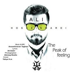 Ali Hosseinmardi - The Peak Of Feeling