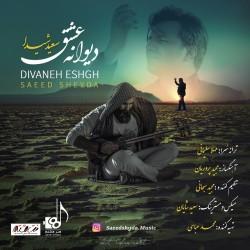 Saeed Sheyda - Divaneye Eshgh