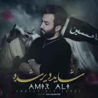 Amir Ali - Shayad Dir Shode