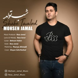 Mohsen Jamal - Shabe Tavallod