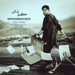 Reza Torabi - Montazeram Bash