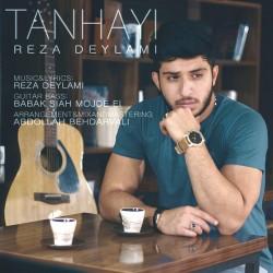 Reza Deylami - Tanhaei