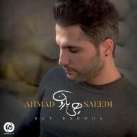 Ahmad Saeedi - Hey Baroon