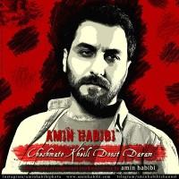 Amin Habibi - Cheshmato Kheyli Doost Daram