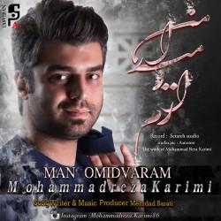 Mohammadreza Karimi - Man Omidvaram