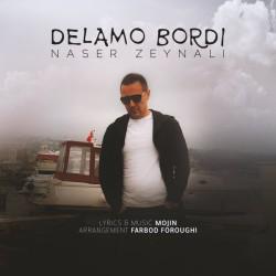 Naser Zeynali - Delamo Bordi