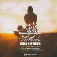 Nima Teymouri - Faramooshi