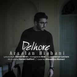 Arsalan Biabani - Delhore
