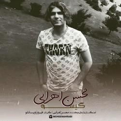 Mohsen Ahrabi - Gisoo