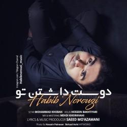 Habib Norouzi - Doost Dashtane To