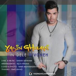 Yasin Gholami - In Dele Divooneh