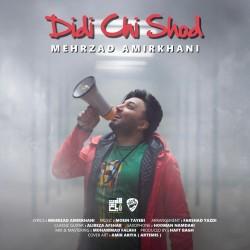 Mehrzad Amirkhani - Didi Chi Shod
