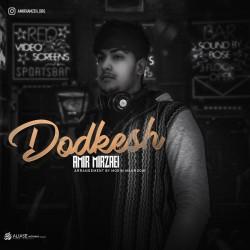 Amir Mirzaei - Dodkesh