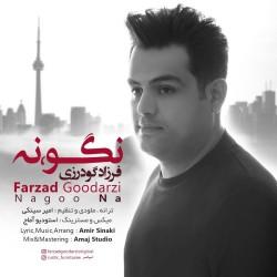 Farzad Goodarzi - Nagoo Na