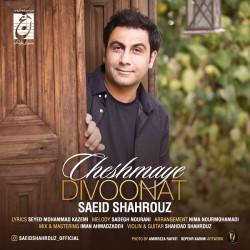 Saeid Shahrouz - Cheshmaye Divoonat