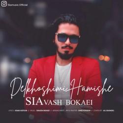 Siavash Bokaei - Delkhoshimi Hamishe
