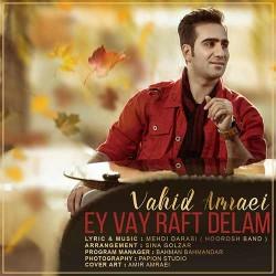 Vahid Amraei - Ey Vay Raft Delam