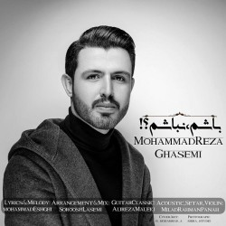 Mohammadreza Ghasemi - Basham Nabasham