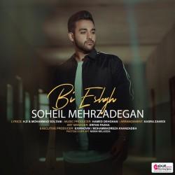 Soheil Mehrzadegan - Bi Eshgh