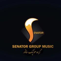 Mahmood Harooni - Senator 1 ( Remix )