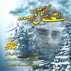 Hamed Moghaddam - Ey Gole Taze