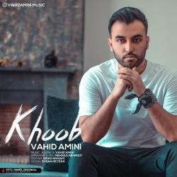 Vahid Amini - Khoob
