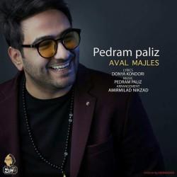 Pedram Paliz - Avale Majles ( Teaser Version )