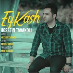 Hossein Tavakoli - Ey Kash