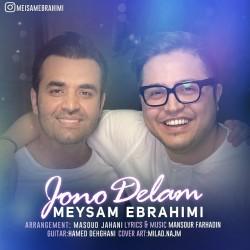 Meysam Ebrahimi - Joono Delam