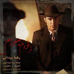 Reza Yazdani - Too Khodam Misoozam